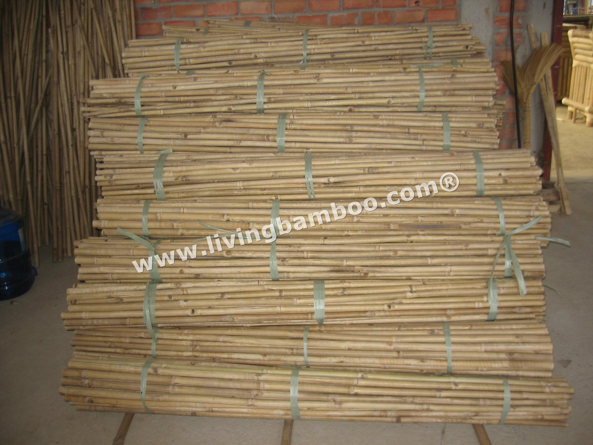 Bamboo Pole-NATURAL TAM VONG BAMBOO POLE SOLID, DURABLE